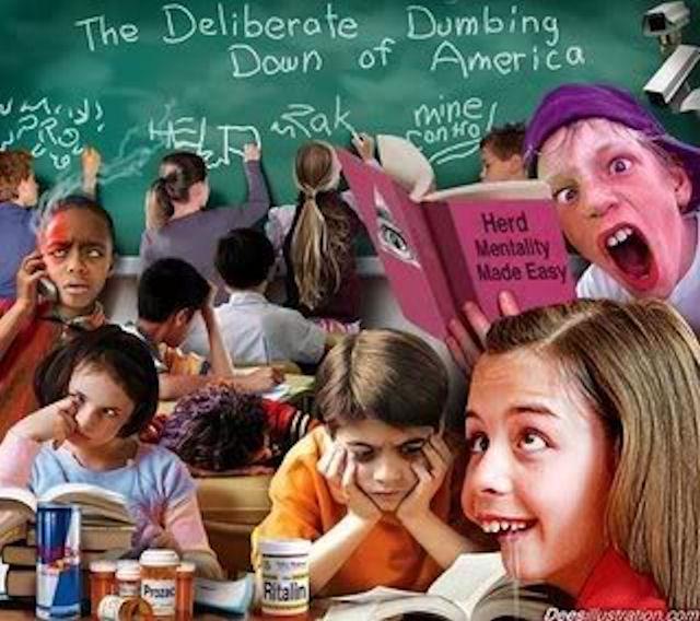 dumb-kids