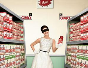 PV-0412-GMO02_01_2