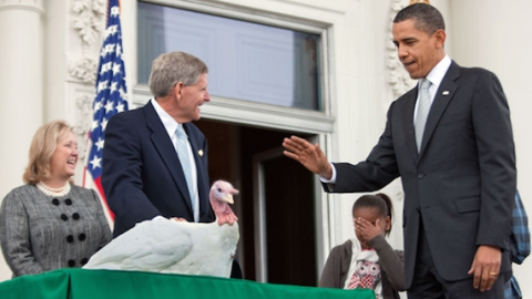 President Barack Obama pardons Courage the turkey in 2009_2